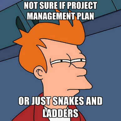 data planning project consulting
